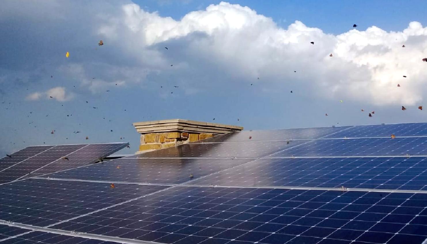 paneles-sunpower-ahorro-por-40-años