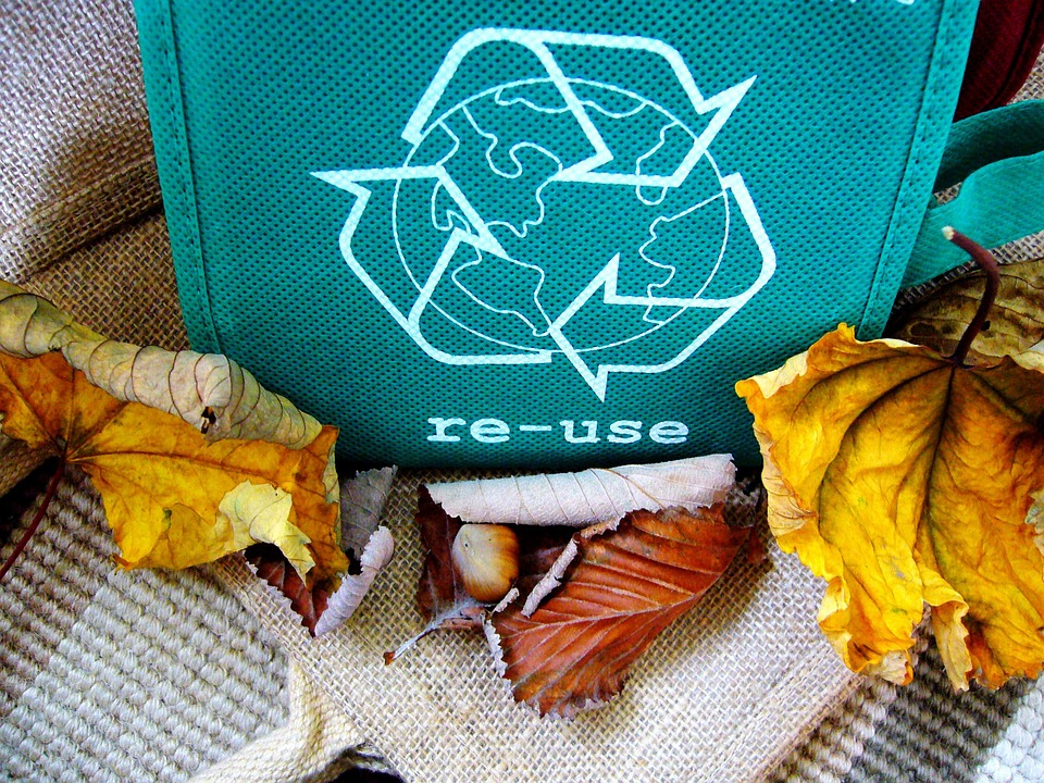 recycle-57136_960_720.jpg