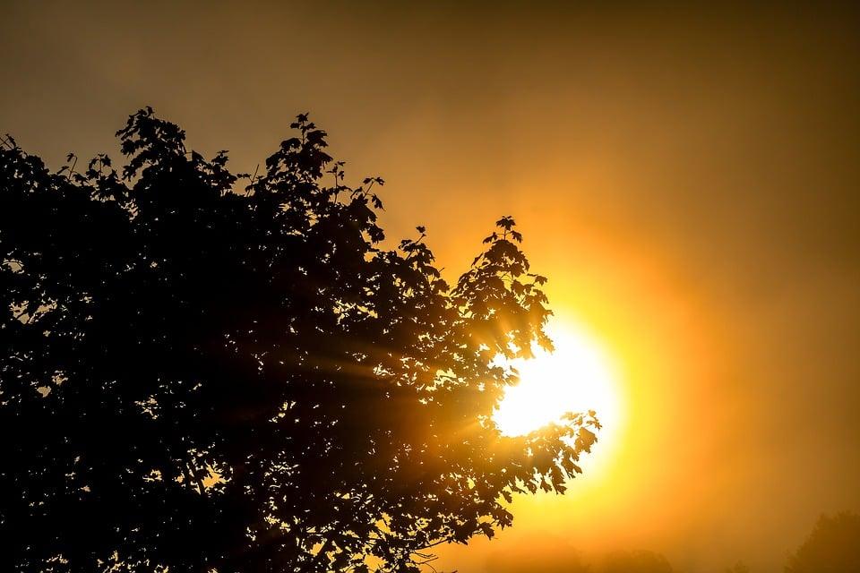 sun-2784408_960_720.jpg