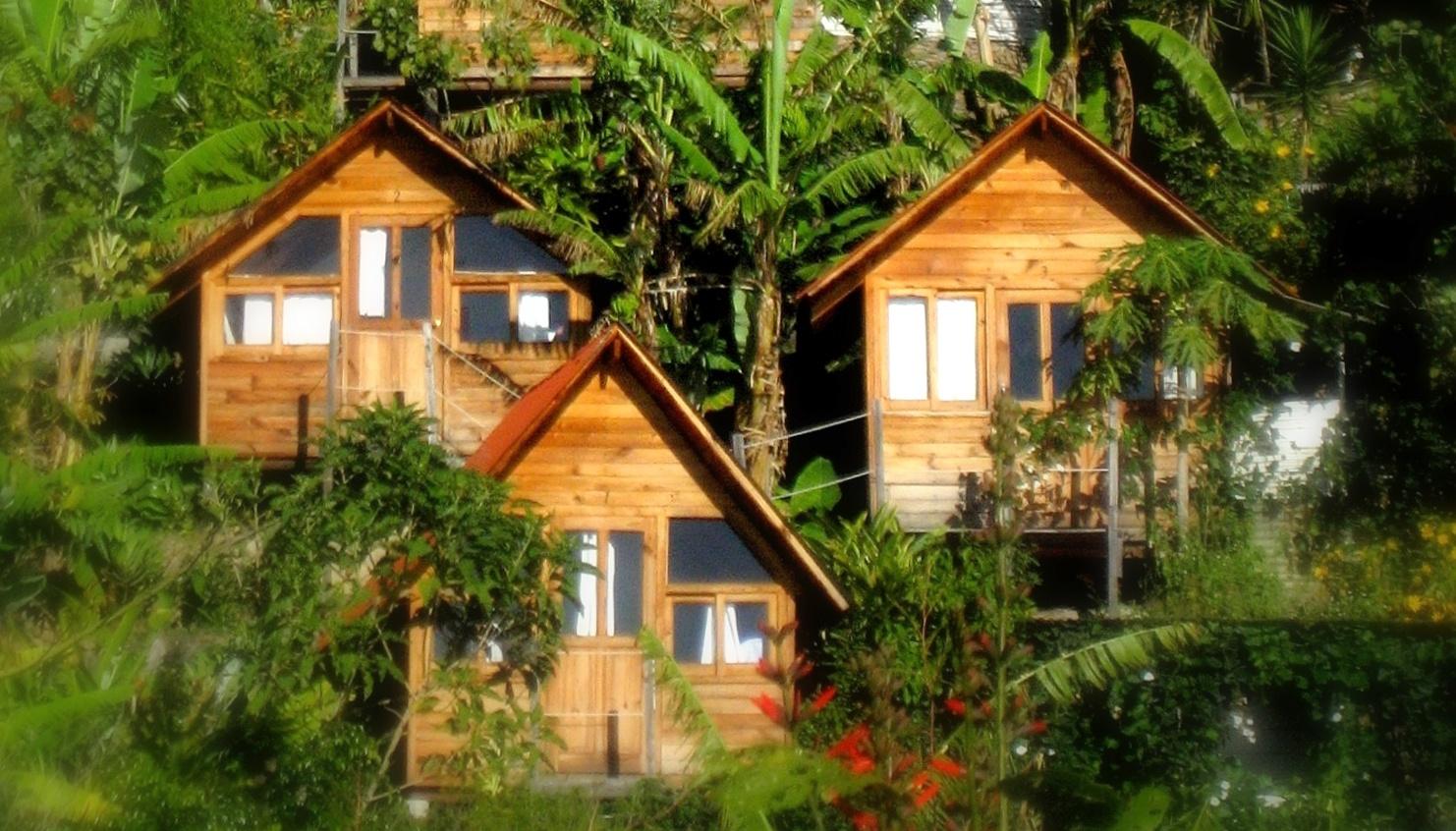 Ecoturismo En M 233 Xico 6 Hoteles Que Debes Visitar Este Verano
